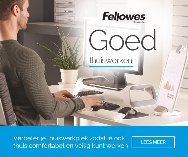 fellowes working from home
